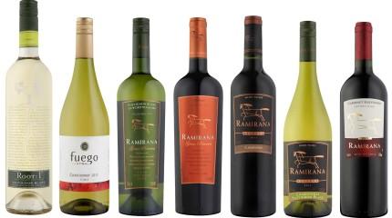 Red White Wine – strona internetowa ze zdjęciami