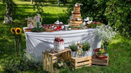 Zdjęcia do katalogu tortów
